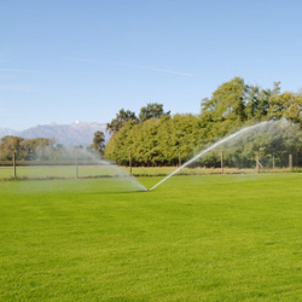 Irrigazione prato verde Ovada