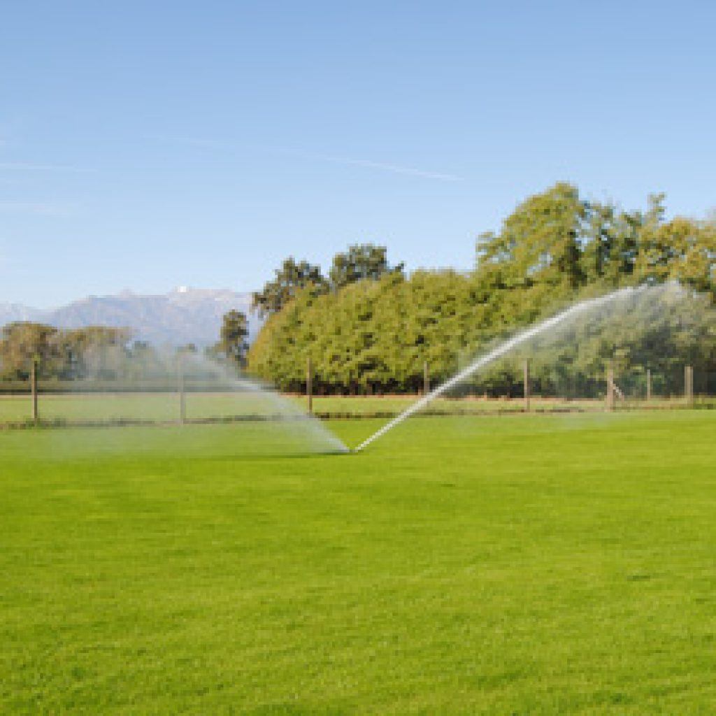 Irrigazione prato verde Carmagnola