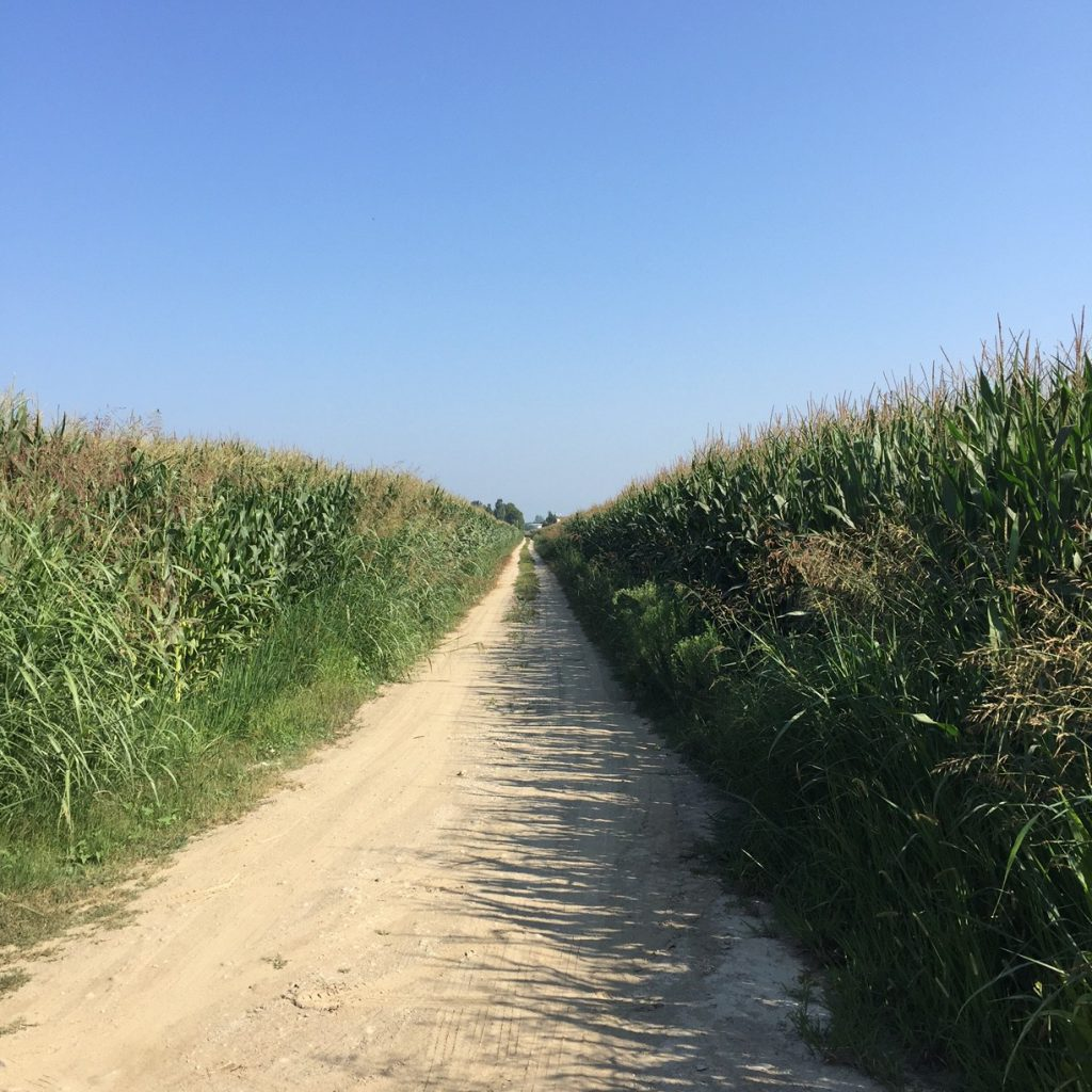 Irrigazione agricola Tortona